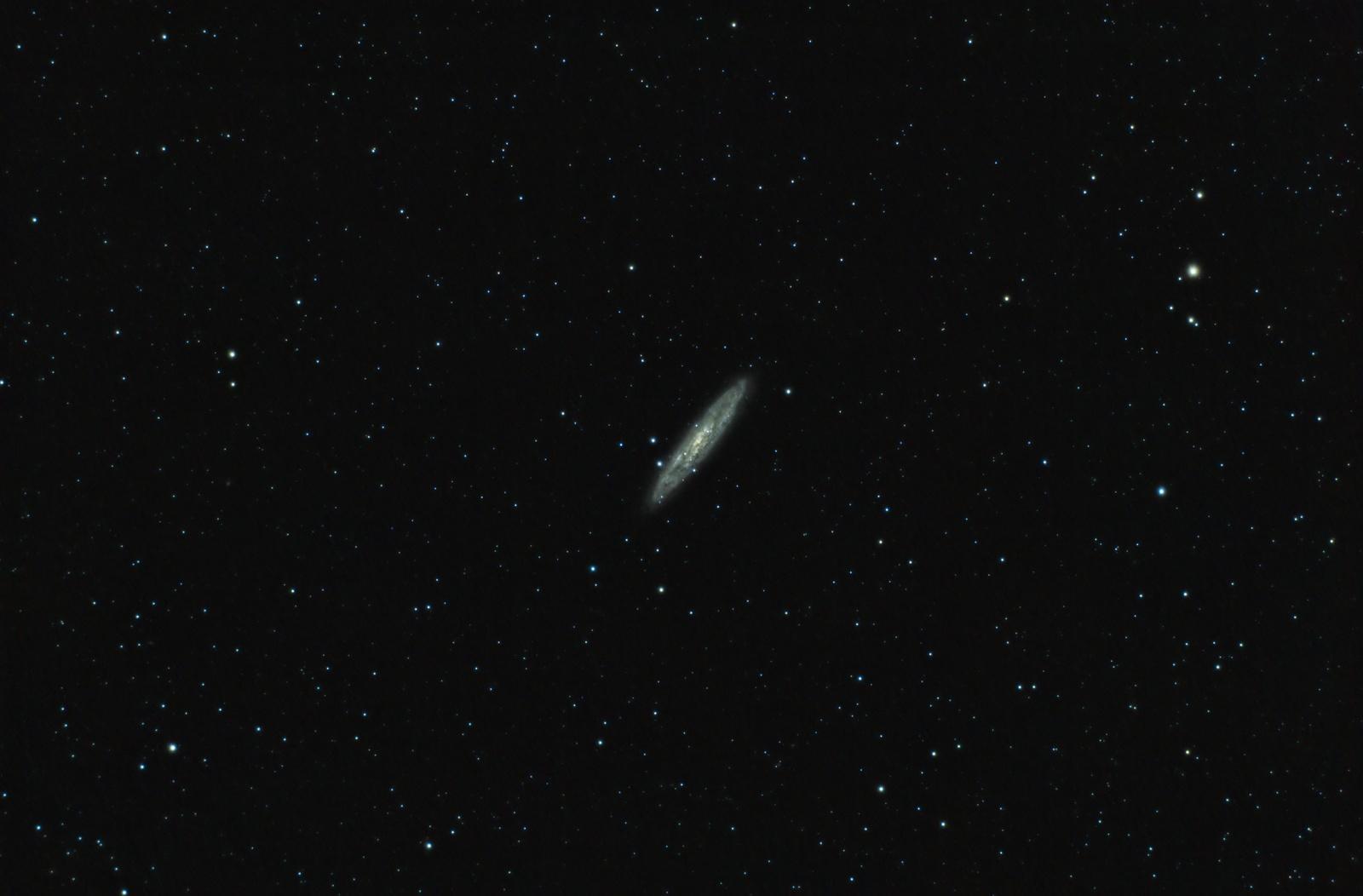 Galaxia del Escultor - NGC253