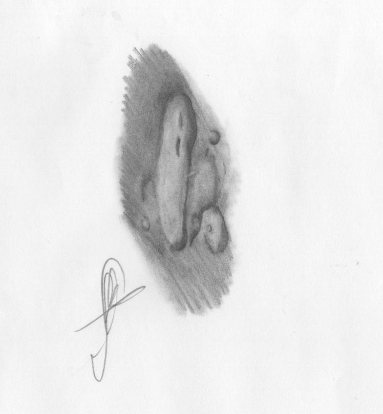 Dibujos Lunares