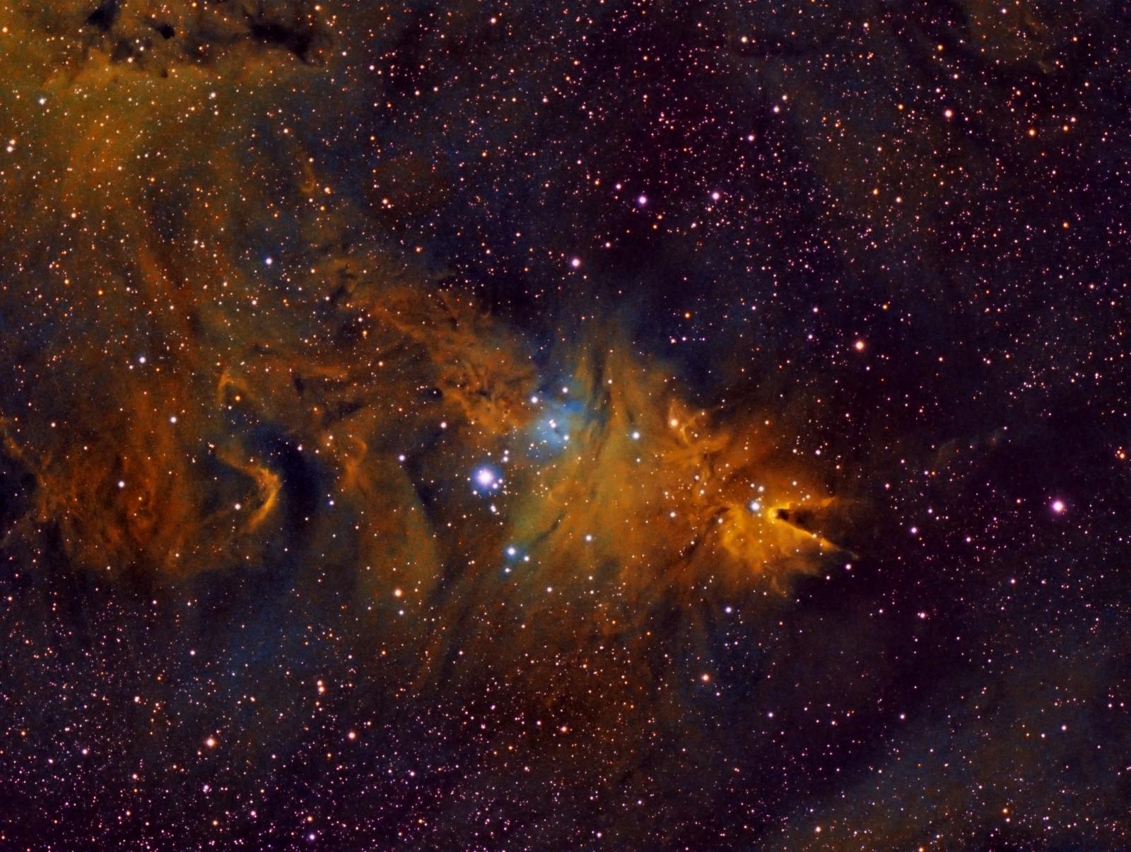 NGC2264 y Fox Fur Nebula narrowband